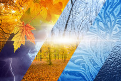 Fall turns to winter. Weather forecast concept. Beautiful nature seasonal background - two seasons of year collage. Vibrant colorful images of different time of stock photos