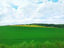 Beautiful nature , Summer farm , Summer filed , Summertime in Luxembourg , Europe. Beautiful nature , Summer farm , Summer filed , Summer time in Luxembourg Stock Image