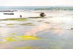 Beautiful nature , Taal Lake at Batangas, Philippines Royalty Free Stock Photos