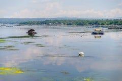 Beautiful nature , Taal Lake at Batangas, Philippines Stock Photos