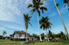 Beautiful nature, traditional wooden house surrounded by coconut Royalty Free Stock Photography