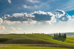 The beautiful nature of Tuscany. A glimpse of Val d'Orcia and of his famous cypresses, one of the most beautiful place in Tuscany Stock Photo