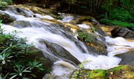 Beautiful Nature Waterfall in gully Chiangmai , thailand Stock Photos