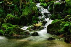 Beautiful nature waterfalls background Royalty Free Stock Photos