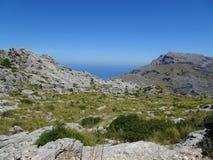 Beautiful nature on the way to Sa Calobra, Mallorca. Lovely nature on the way to Sa Calobra, Mallorca Royalty Free Stock Images