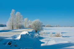 Beautiful nature, winter Royalty Free Stock Image