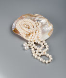 Beautiful necklace of white pearls in pearl. On a gray background Royalty Free Stock Photo