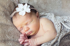 Beautiful new born girl Royalty Free Stock Image
