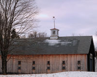 Beautiful New England Wood Barn with a white cupola on a cloudy enters day. Oak tree with no leaves, 2 row of windows, multi-pane windows, snow covered field Royalty Free Stock Images