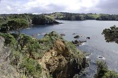 Beautiful New Zealand. Beautiful bay scenery somewhere in New Zealand Royalty Free Stock Photo