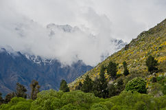 Beautiful New Zealand. Queenstown. Royalty Free Stock Image