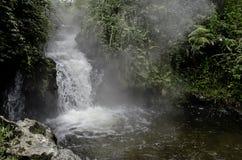 Beautiful New Zealand.Thermal waterfall. Stock Photos