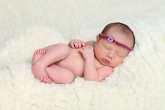 Beautiful newborn baby Stock Photography