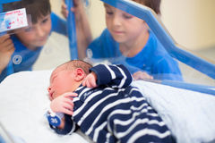 Beautiful newborn baby boy, laying in crib in prenatal hospital,. His brothers looking at him with adore Royalty Free Stock Images