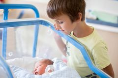 Beautiful newborn baby boy, laying in crib in prenatal hospital, his brothers looking at him royalty free stock images