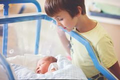 Beautiful newborn baby boy, laying in crib in prenatal hospital, his brothers looking at him. With adore royalty free stock photos