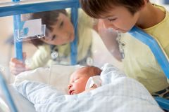 Beautiful newborn baby boy, laying in crib in prenatal hospital,. His brothers looking at him with adore Stock Images