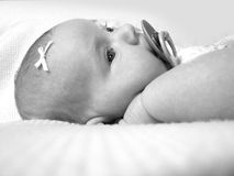 Beautiful Newborn Baby Girl. Newborn baby infant wide awake with eyes open sucking on her pacifier, could be a great greeting card cover design with room for Stock Photography