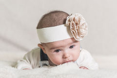 Beautiful newborn baby girl. With bow, lying in her bed Stock Photo