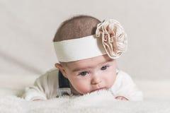 Beautiful newborn baby girl Stock Photo
