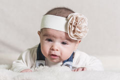Beautiful newborn baby girl. With bow, lying in her bed and smiling Stock Images