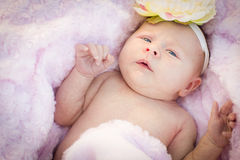 Beautiful Newborn Baby Girl Laying in Soft Blanket. Beautiful Newborn Baby Girl Laying Peacefully in Soft Pink Blanket Stock Image