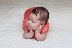 Beautiful newborn baby sleeping on her elbows and hands Stock Images