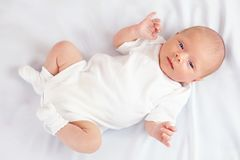 Beautiful newborn baby on white, three weeks old Stock Images