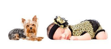 Beautiful newborn girl sleeping with her dog. Beautiful newborn girl sleeping together with her dog Yorkshire Terrier royalty free stock image