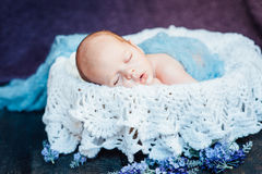 Beautiful newborn sleeping baby boy. With knitted plaid on a wooden background Stock Photography