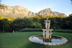 Beautiful Newlands looking on Devils peak Capetown. Beautiful fountain and garden spot evening in Newlands  Capetown  SouthAfrica Africa  Cape tablemountain Royalty Free Stock Photo