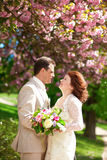 Beautiful newlywed couple Stock Photos