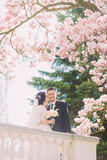 Beautiful newlywed couple on terrace in sunny garden under blossoming magnolia tree branches. Bride is kissing groom' cheek Stock Photo