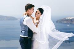 Beautiful newlyweds hugging on sea Stock Images