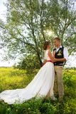 Newlyweds stand in the sun, in a park near a tree. wedding in nature. Beautiful newlyweds stand in the sun, in a park near a tree. wedding in nature Royalty Free Stock Photos