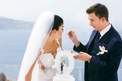 Beautiful newlyweds taste a wedding cake Royalty Free Stock Image