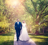 Beautiful newlyweds walking in a green park. Stock Photos