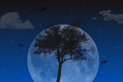 Beautiful night landscape. Beautiful night background with tree, moon, clouds, stars and bats Royalty Free Stock Photography