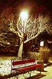 Beautiful night landscape city bench under lamp Royalty Free Stock Photo