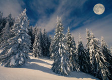 Beautiful night scenery in mountains at winter Royalty Free Stock Photography