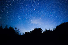 A beautiful night sky, spiral star trails and the forest Royalty Free Stock Photos