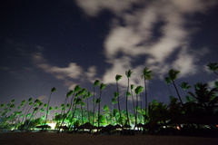 The beautiful night sky, stars and the palm trees Royalty Free Stock Photos