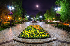 A beautiful night view of the street in Donetsk Stock Photo