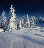 Beautiful night winter landscape. In the mountains with the stars Royalty Free Stock Images