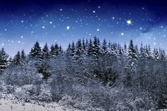 Beautiful night winter landscape in the mountains with the stars. Winter landscape with snow in the mountains Germany.Christmas background with snow and trees Stock Photos