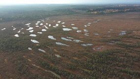 A beautiful northern autumn bog with hundreds of small lakes, Mukhinskoe swamp in the Leningrad region