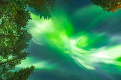 Beautiful Northern lights over head Stock Image