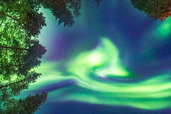 Beautiful Northern lights over head Stock Images