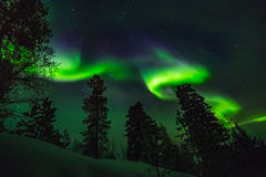 Beautiful Northern lights over head Royalty Free Stock Photography