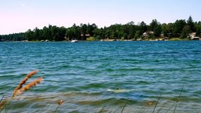 Beautiful northern Minnesota lake with wooded shoreline and homes on a sunny day with a pontoon in distance. Beautiful northern Minnesota lake with wooded stock video